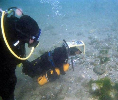 caine subacvatic