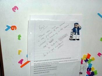 mesaj pe frigider