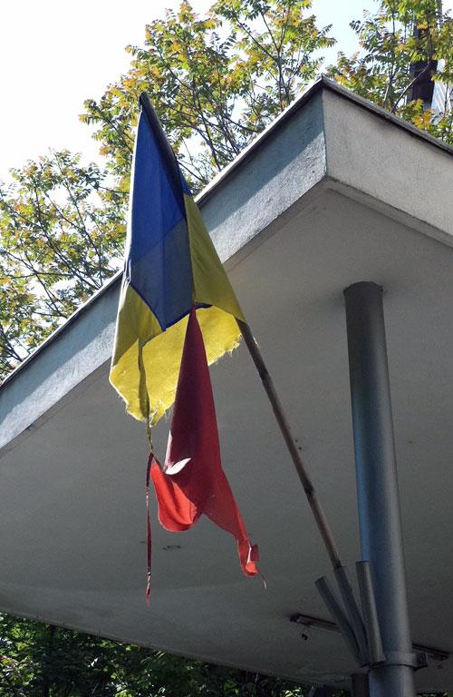 ziua steagului
