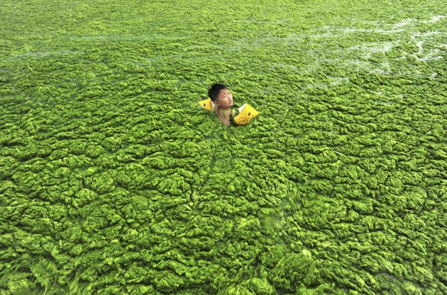 alge 3